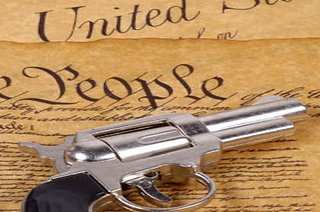 wethepeople-guns