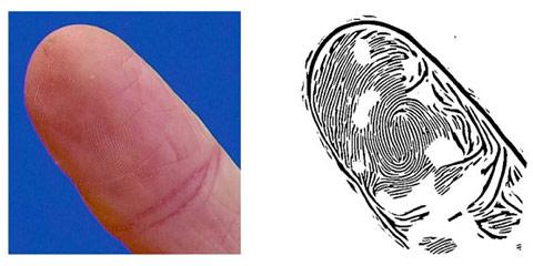 fingerprint-photo