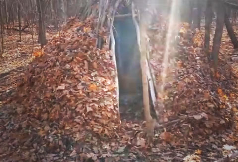 "Are You Prepared to Survive in the Wilderness Alone? ""Natural Shelter, Blend In"""