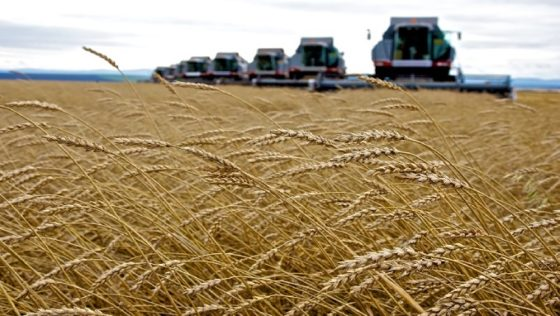 Russia Is Now An Agricultural Superpower: US Wheat Can No